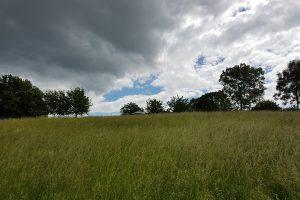 Monte Scherbelino